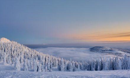 Wintersport im Bayerischen Wald