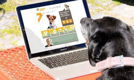 Plattform zur Tiervermittlung