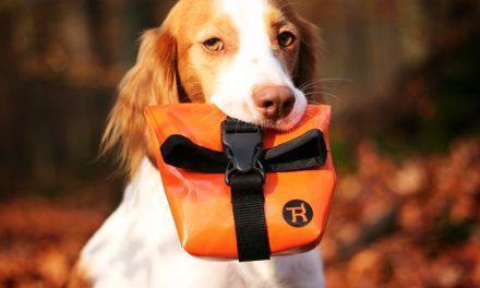 Accessoires für Haustiere